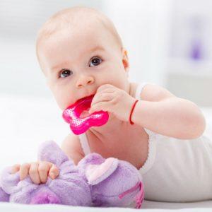 anneaux dentition régrigéré bébé